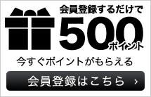 VICE FAIRY (ヴァイスフェアリー) メンズ  渋谷109系 通販 お兄系 悪羅悪羅系 会員登録